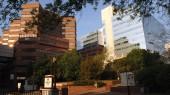 VUMC chosen for leadership role in NIH Precision Medicine Initiative Cohort Program