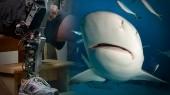 Bionic_shark_vucast
