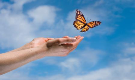 Butterflies Are Free premieres November 5 at Vanderbilt