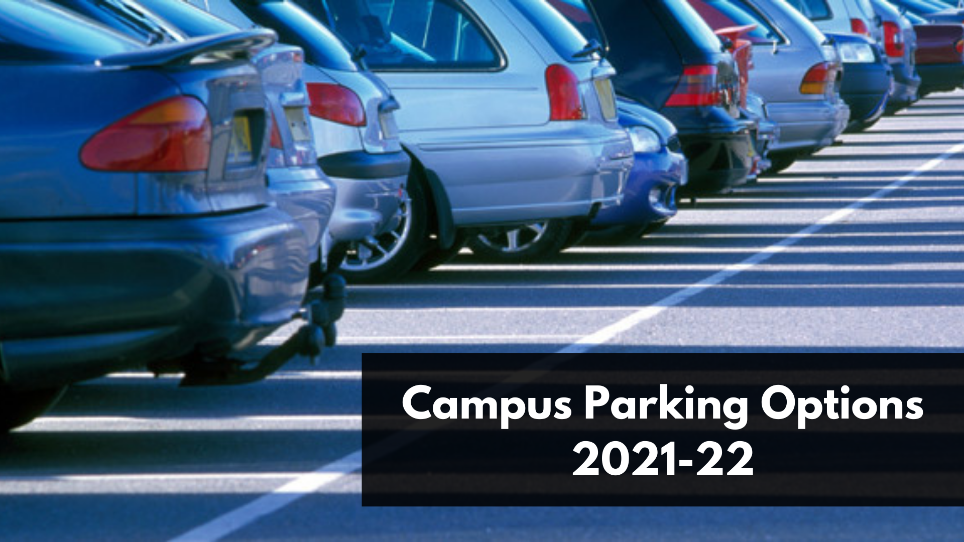 Graduate and professional students: Apply for expanded daily parking program; annual parking permits available in August