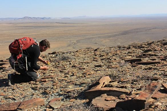 Darroch in desert examining rocks