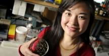 Bacterial protein found in yogurt may alleviate inflammatory bowel disorders