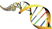 My Cancer Genome launches new search tool for clinical trials
