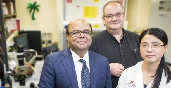Rizwan Hamid, M.D., Ph.D., left, James West, Ph.D., Ling Yan, Ph.D., and colleagues are studying bone marrow cells' role in pulmonary arterial hypertension. (photo by Susan Urmy) photos by Susan Urmy