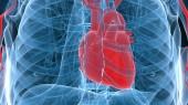 As Heart Month turns 50, Vanderbilt health educator offers tips for heart health