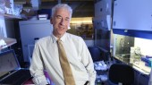 Polarity protein suppresses tumor growth, invasion