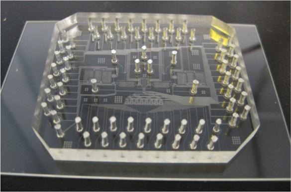 Microforumulator