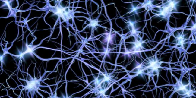 Neurons illustration/stock photo