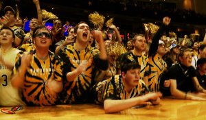 Vanderbilt University 2012 Spot