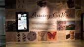 Technology enhances perceptions at Vanderbilt Libraries exhibition