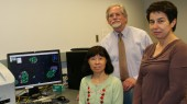 Diabetes effort aims to boost function of insulin-producing cells
