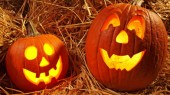 Enter the Health Plus pumpkin carving competition