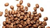 'Third Wave' coffee movement focus of Vanderbilt discussion