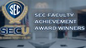 Ford wins SEC Faculty Achievement Award