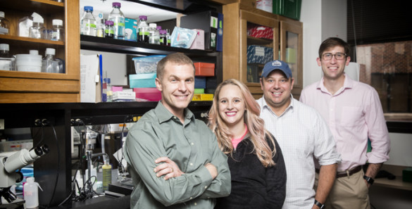 Jonathan Schoenecker, M.D., Ph.D., left, Stephanie Moore, Nicholas Mignemi, Ph.D., Courtney Baker and colleagues are studying how severe injuries and certain orthopaedic surgeries can cause muscle and other soft tissues to calcify. (photo by Joe Howell)