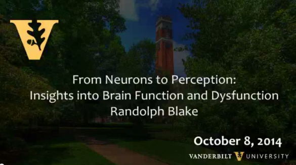 From Neurons to Perception: Insights into Brain Function and Dysfunction by Randolph Blake