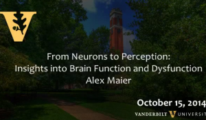 From Neurons to Perception: Insights into Brain Function and Dysfunction by Alex Maier