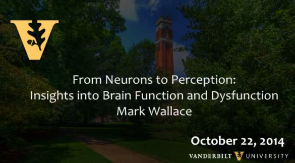 Neurons to Perception: Insights into Brain Function and Dysfunction by Mark Wallace