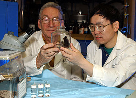 Sid and a student looking at a beaker