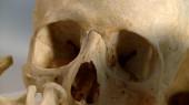 VUCast: Skull Sessions