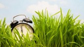 Spring forward this weekend; Get tips on surviving the seasonal time change