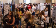 Undergraduate research fair and poster session Sept. 14