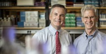 Study explores protein's role in inflammation-associated cancer