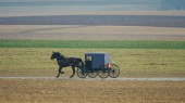 Amish aid study of Parkinson genetics