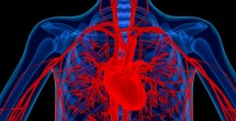Vanderbilt Heart to participate in CoreValve clinical trial