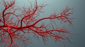 Tumor factor spurs blood vessel growth