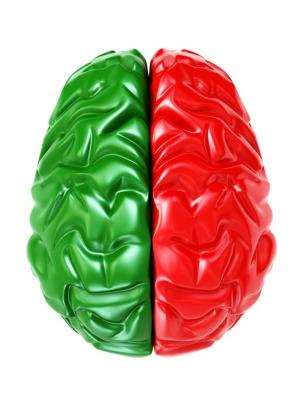 two-color brain