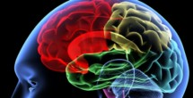 Brain study sheds light on how children with autism process social play