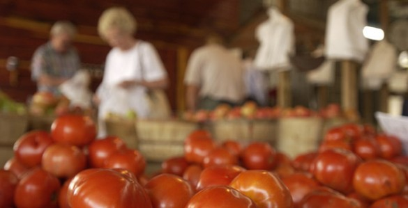 Tomatoes are in high season in July. Photographed at the Vanderbilt Farmers' Market. (Joan Brasher/Vanderbilt)