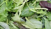 Folate may lower breast cancer risk for some