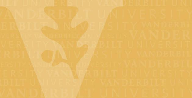 Gold VU Background