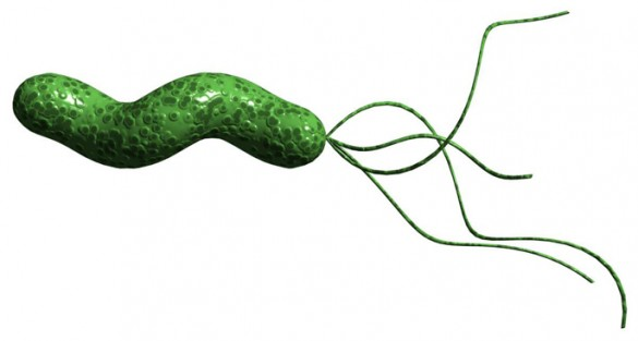 colombian andes ...H. Pylori