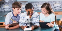 Teacher's race affects gifted program selections
