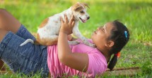 chubby child playing with dog