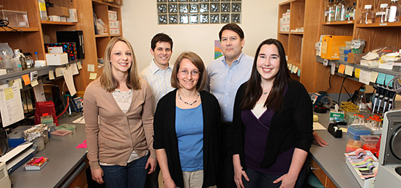 Members of the team studying genes associated with epilepsy include (front row, from left) Alison Miller, M.S., Jennifer Kearney, Ph.D., Courtney Campbell, (back row, from left) Benjamin Jorge and Alfred George, M.D. (Susan Urmy / Vanderbilt University)