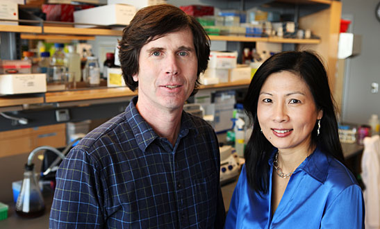 John Kuchtey, Rachel Kuchtey and colleagues have identified a new candidate gene for a common form of glaucoma. (Susan Urmy / Vanderbilt)