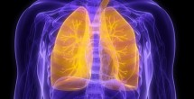 Vanderbilt played a key role in testing two new drugs recently approved to treat idiopathic pulmonary fibrosis. (iStock)