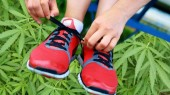Exercise can curb marijuana use and cravings