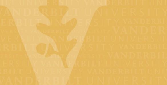 Mario Avila | Biography | Vanderbilt Business