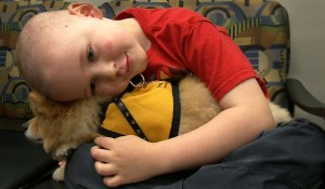 Pet Therapy Research Aimed at Children with Cancer