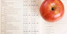 Should principal evaluations be based on student test scores?