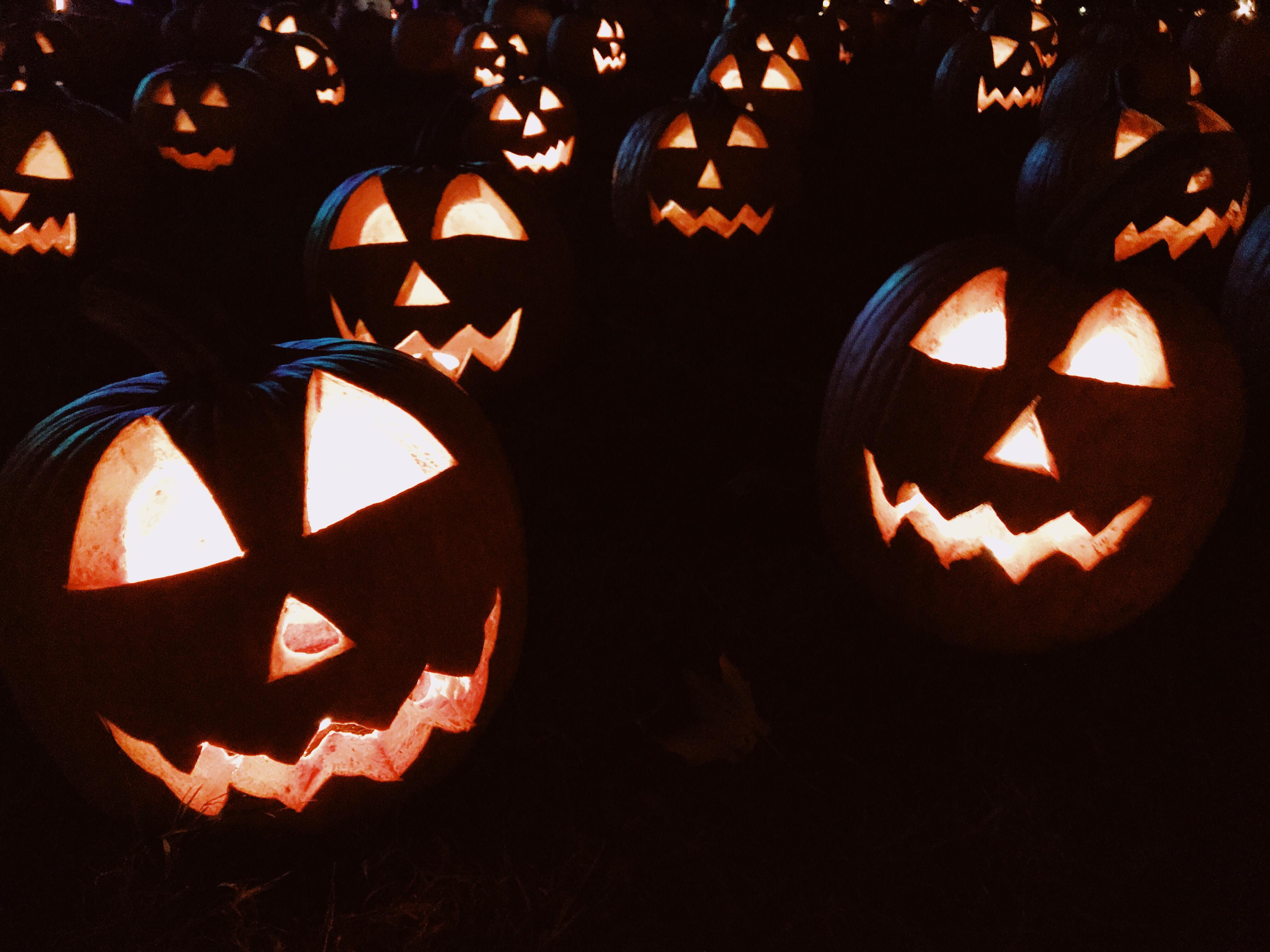 carved jack-o-lantern pumpkins