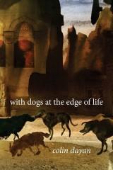 Dayan Dogs