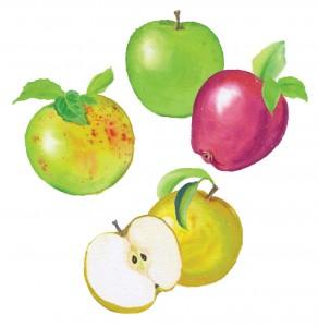 Expertise-apples
