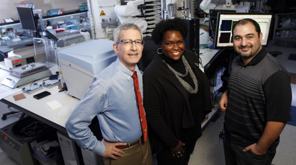 The Vanderbilt team investigating new therapies for severe obesity includes, from left, Roger Cone, Ph.D., Savannah Williams and Julien Sebag, Ph.D. (photo by Joe Howell)